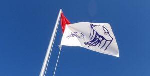 bandera blanca medusas