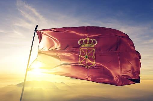 Historia y curiosidades de la bandera y escudo de Navarra