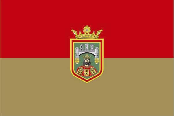 Bandera Burgos