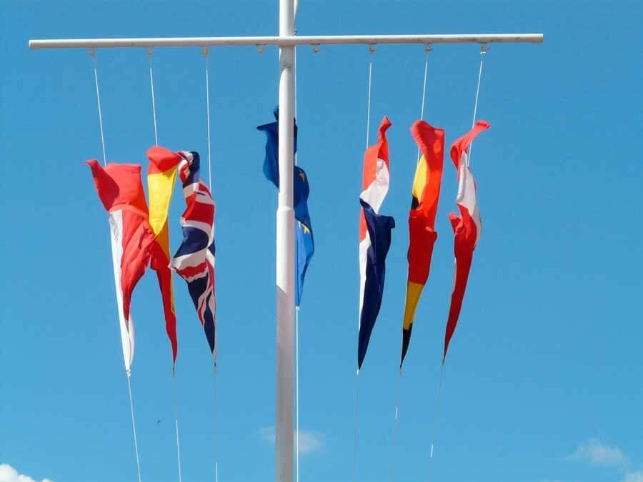 El diccionario del mundo de las banderas
